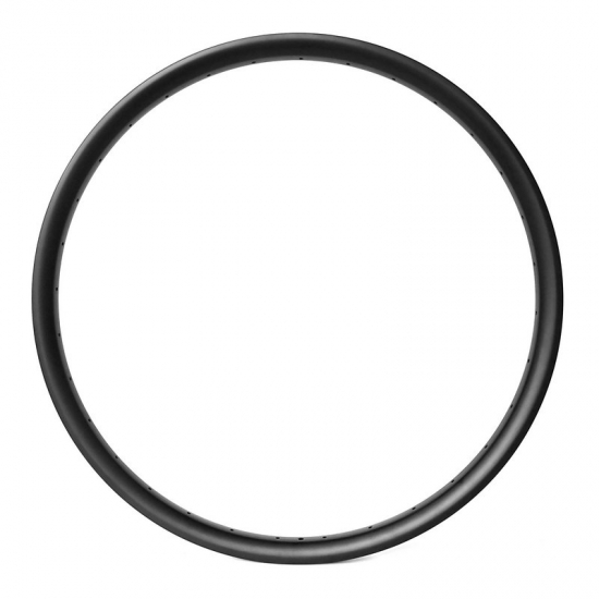 carbon enduro rim